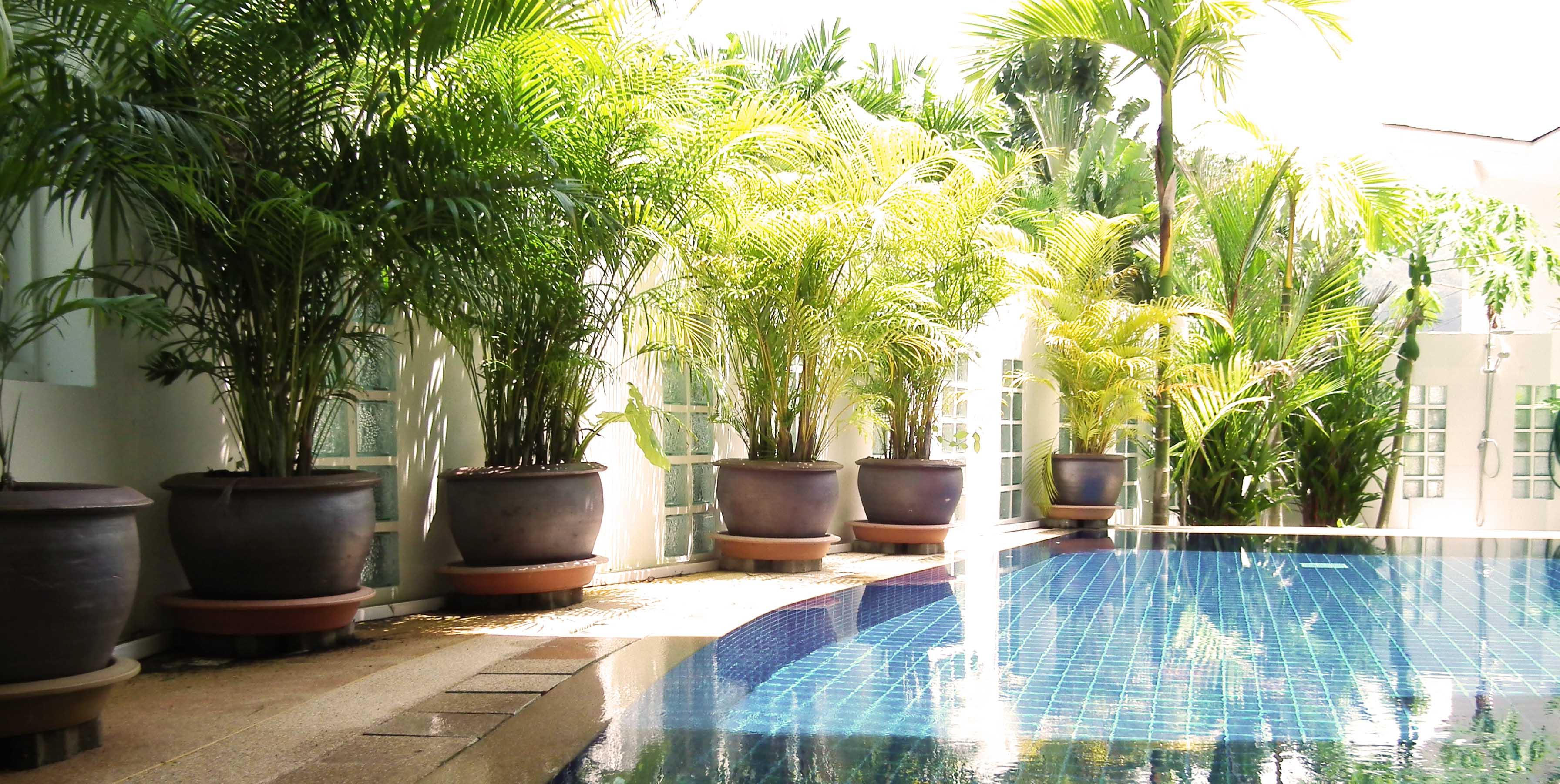 Design villa moderne jardin maison moderne for Jardin pour villa moderne